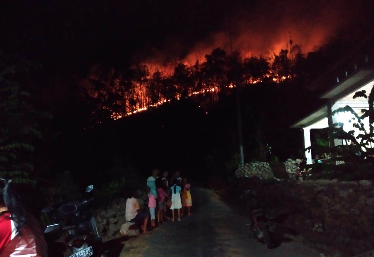 Gunung Merbabu terbakar