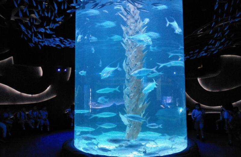 Jakarta Aquarium (April)