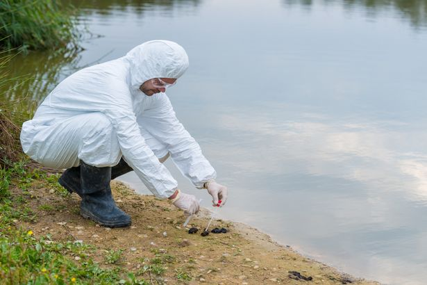 Sungai tercemar (mirror)