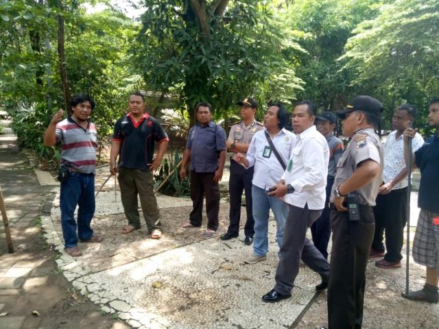 Petugas Bersiap Menangkap Harimau di Bonbin Semarang (foto: Taufik Budi)