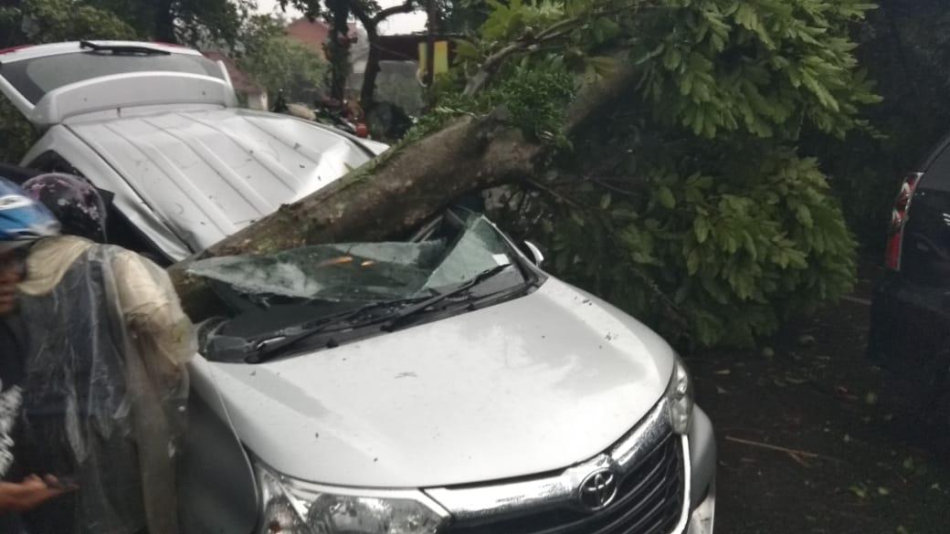 Puting Beliung terjang Bogor, mobil tertimpa pohon