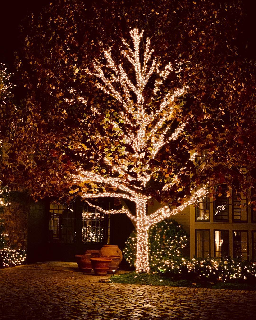 dekorasi pohon