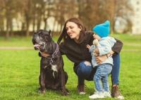 Si Kecil Nangis Melihat Anjing? Begini Cara 'Selamatkan' Ketakutannya agar Tidak Trauma Sampai Dewasa
