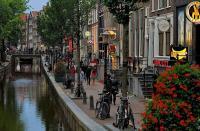 BACKPACKER DIARY: Menyisir Wisata Syahwat di Red District Amsterdam, Hati-Hati Dilarang Memandang Terlalu Lama!