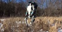 Ini Dia Daftar Robot-Robot Tercanggih di Dunia, Apa Saja?