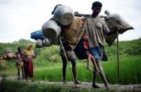Bantu Selesaikan Krisis Rohingya, China Usulkan Rencana Tiga Tahap