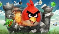 Penasaran dengan Sosok <i>Angry Bird</i> yang Nyata? Begini Tampilannya, <i>Gemesin</i>