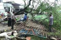 Puting Beliung Hantam Probolinggo, Belasan Rumah Warga Rusak