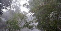 Fenomena Angin Kencang di Jawa dan Kalimantan, Ini Kata BMKG
