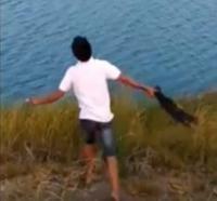Heboh Video Anjing Kecil Dilempar Jadi Santapan Buaya Ganas, Warganet Kesal