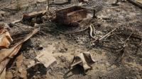 Foto Satelit 'Perlihatkan' Desa Rohingya Dibuldoser Pemerintah Myanmar
