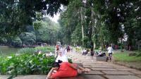 Pentingnya Kebun Raya untuk Lingkungan, Pariwisata hingga Kesehatan