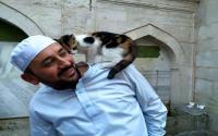 Menggemaskan, Kucing-Kucing Penghuni Masjid