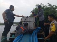 Harimau Bonita yang Serang 2 Warga Riau Akhirnya Tertangkap