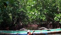 Hari Kartini dan Hutan Khusus Perempuan di Papua
