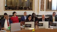 Sri Mulyani Pimpin Pertemuan Lembaga Keuangan Negara Anggota OPEC di Austria