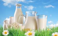 Sering Minum Susu Bisa Bikin Perokok Berhenti Jadi 'Ahli Hisap'