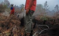 14 Hari Terbakar, 1.310 Hektare Lahan di Gunung Ciremai Hangus