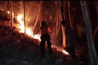 Basarnas Pantau Kemungkinan Pendaki Terjebak di Kebakaran Gunung Merbabu