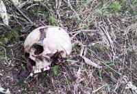Hilang Hampir Setahun, Nenek Titing Ditemukan di Dalam Hutan Tinggal Tengkorak