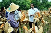 Buruh Migran di Hong Kong Yakin Jokowi Lanjut 2 Periode