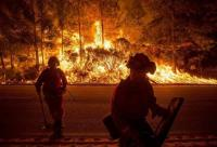 Kebakaran Hutan di California Renggut 50 Jiwa, 7.600 Rumah Musnah
