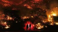 Pasca Kebakaran Dashyat, California 'Butuh Rekonstruksi Besar-Besaran'