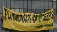 Naiki Tanker Minyak Sawit, Enam Aktivis Greenpeace Ditangkap