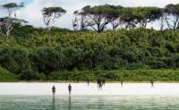 Kunjungi Pulau Terlarang, Turis Asal AS Tewas Dipanah Penduduk Lokal