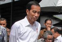 Jokowi Minta Petani Tak Lagi Tanam Sawit dan Karet
