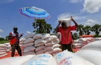Bantuan dari PBB Picu Keracunan Massal di Uganda
