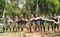 Peduli Satwa, Puslatpur TNI Lepaskan Kembali Ular Piton Sepanjang 8 Meter