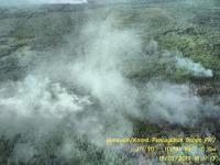 Kebakaran Lahan dan Hutan di Riau Meluas hingga 2.719 Hektare