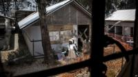 Pemberontak Bersenjata Kembali Serang Rumah Sakit Ebola di Kongo
