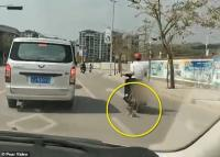 Pria Seret Anjing Piarannya Sambil Naik Motor Picu Kemarahan Warganet China