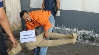 Rekonstruksi Kasus Mutilasi di Malang, Pelaku Peragakan 38 Adegan