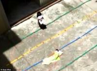 Berisik di Kelas, 2 Murid TK Dipaksa Tidur di Halaman Sekolah saat Siang Hari