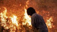 Dampak Karhutla, Gubernur Kalbar Copot Kepala Pengelola Hutan Kubu Raya