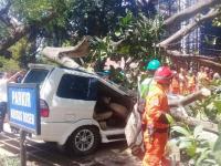 Petugas Evakuasi Mobil yang Tertimpa Pohon di Universitas Pancasila