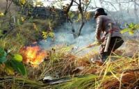 2 Hektare Lahan di Pegunungan Majene Hangus Terbakar