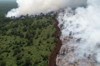 675 Titik Api Tersebar di Sumsel, Udara Palembang Paling Berbahaya di Indonesia