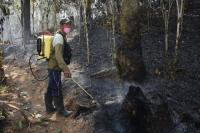 Hutan yang Terbakar di Gunung Bawakaraeng 10 Hektare