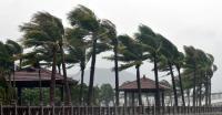 Rusak 43 Rumah, Puting Beliung di Kendal Hanya Berlangsung 5 Menit