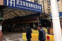 Pasar di Wuhan, Kota Pusat Virus Korona Jual Ular, Tikus hingga Serigala
