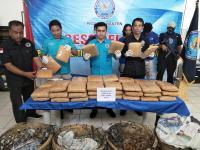Ditutupi Asam Jawa, 50 Kg Ganja yang Dikendalikan Napi Diamankan BNN