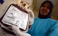 Stok Darah PMI Jatim Turun Selama Corona, Aksi Donor Digelar