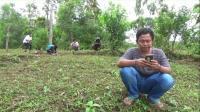 Siswa di Pelosok Harus Naik Gunung demi Sinyal untuk Belajar Online