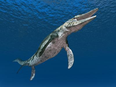 Ditemukan Fosil Bayi Monster Laut Berumur 85 Juta Tahun
