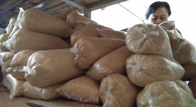Daya Saing Gula RI Kalah dari Filipina dan Thailand