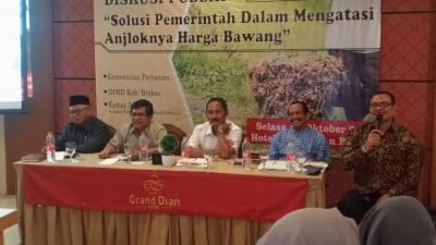 Harga Bawang Merah Anjlok di Tingkat Petani, Berikut Strategi Pemerintah